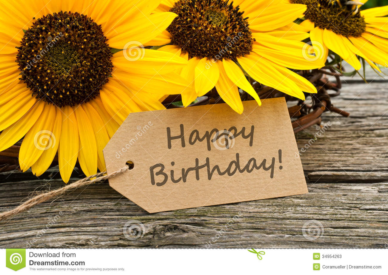 happy birthday sunflowers ; happy-birthday-english-card-sunflowers-34954263
