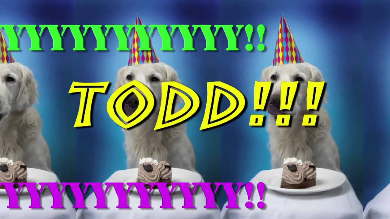 happy birthday todd meme ; maxresdefault