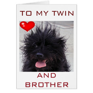 happy birthday twin brother card ; dogs_bad_hair_day_happy_birthday_twin_brother_card-ra294e1d83a6d49218014bdf227570ef2_xvuat_8byvr_307