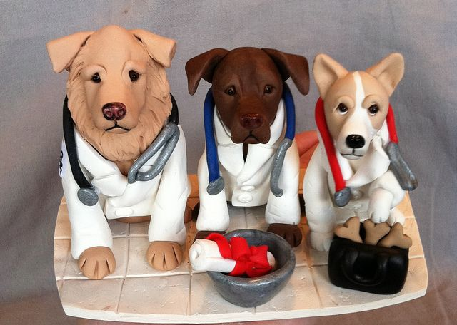 happy birthday veterinarian ; 323f032b91923f6acebcd8812959f8d2--doctor-cake-dog-doctor