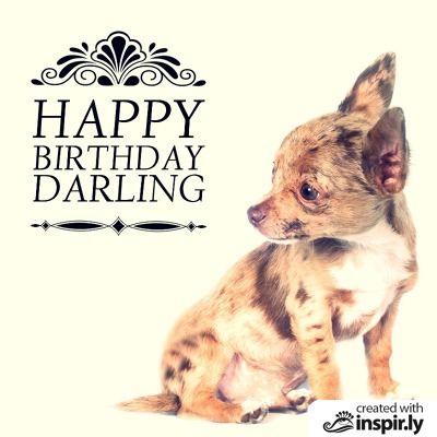 happy birthday veterinarian ; darling