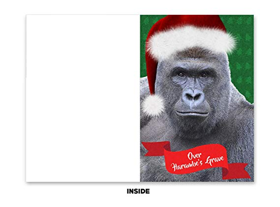 harambe birthday card ; 71gDfmGB8nL