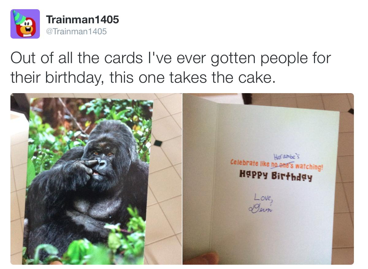 harambe birthday card ; Zw9t3zX