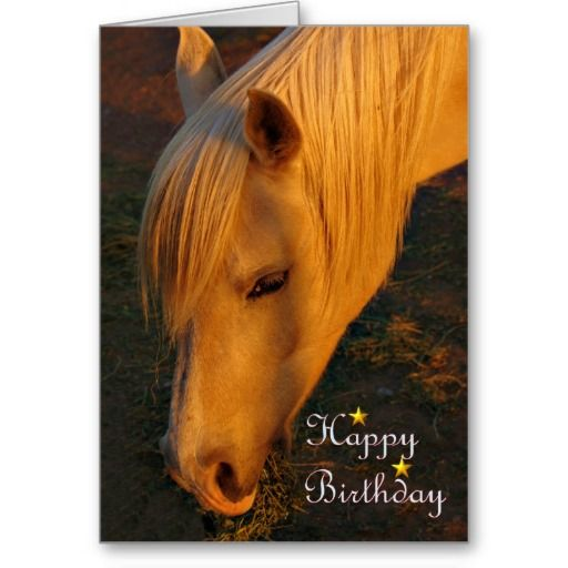 horse birthday card sayings ; 1a270a758b21ca3b957b05e1645a7bb4--horse-birthday-holiday-wishes
