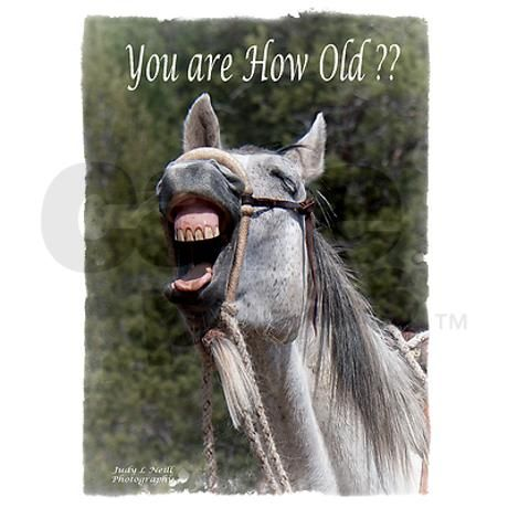 horse birthday card sayings ; 35bd0c429a3eecd2e500febbba803a1d--birthday-greetings-birthday-wishes