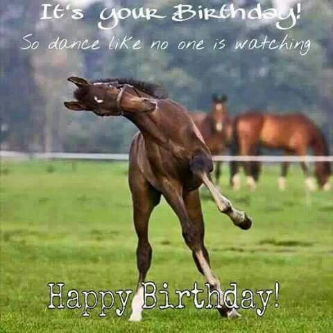 horse birthday card sayings ; 429de6a9c9fdef6a45bd7984eec6f37f--birthday-cards-birthday-greetings