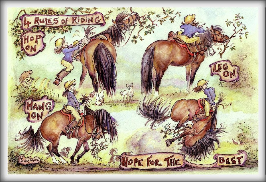 horse birthday card sayings ; 933_JT10RULESOFRIDING