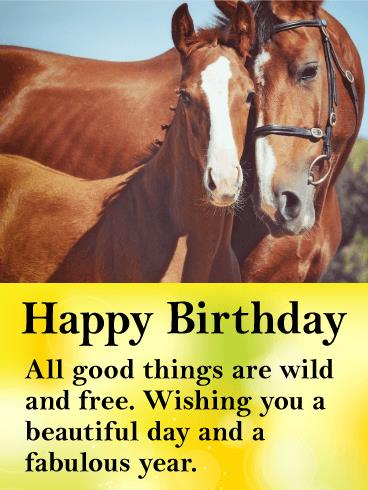 horse birthday card sayings ; a_b_day53-691f1266d7fb6b36778a68c449a351aa