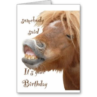 horse birthday card sayings ; b9dc33f14926afb0183c845efc97a69f