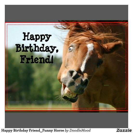 horse birthday card sayings ; cowgirl-birthday-card-sayings-elegant-124-best-horse-birthday-quotes-images-on-pinterest-of-cowgirl-birthday-card-sayings
