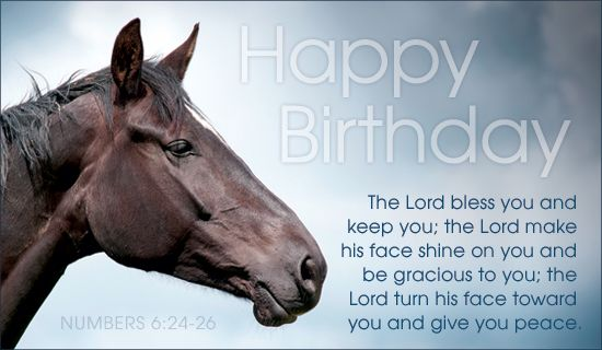 horse birthday card sayings ; f08913ca7a6309687c61373c64097088