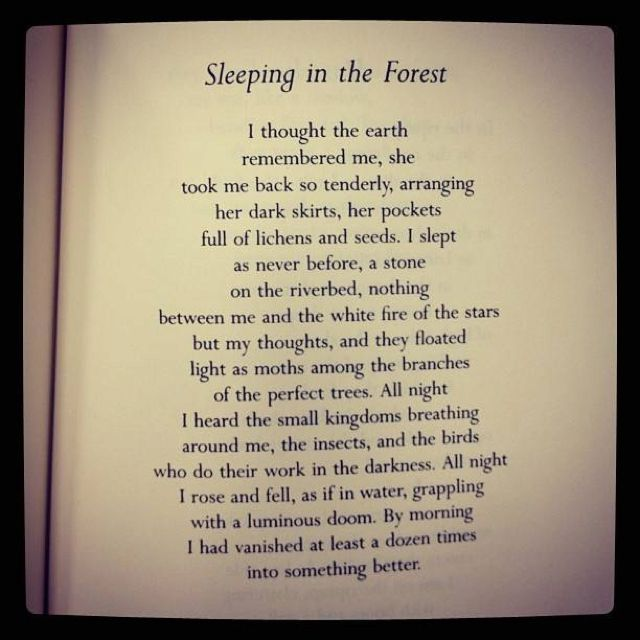 mary oliver birthday poem ; 7d9da87d225d2352eeb8cf7cece78fab--forest-quotes-poetry-inspiration