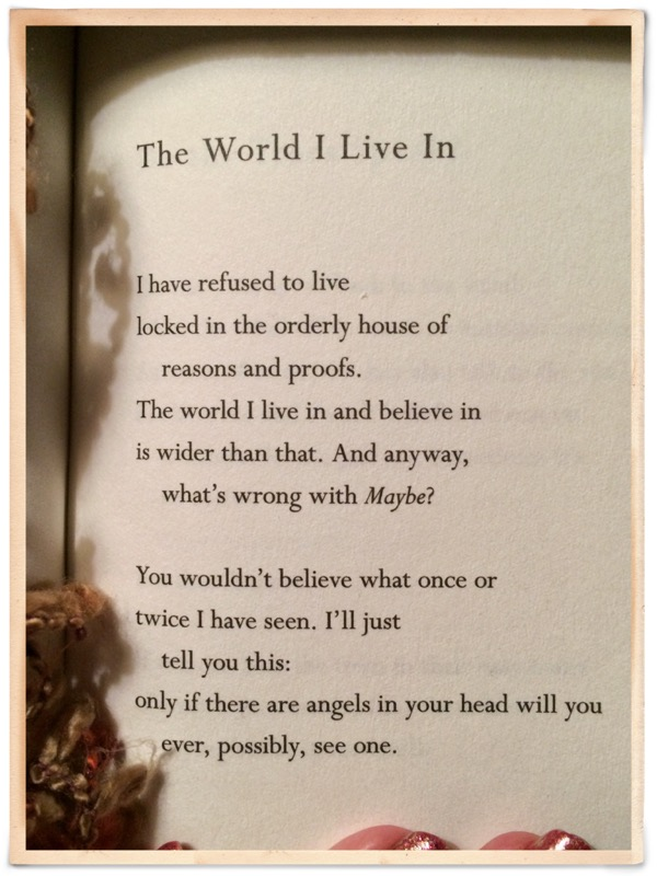 mary oliver birthday poem ; image4