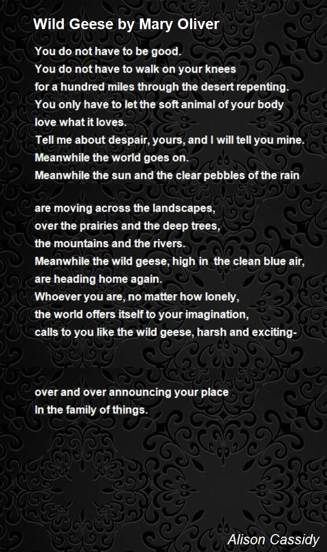 mary oliver birthday poem ; wild-geese-by-mary-oliver