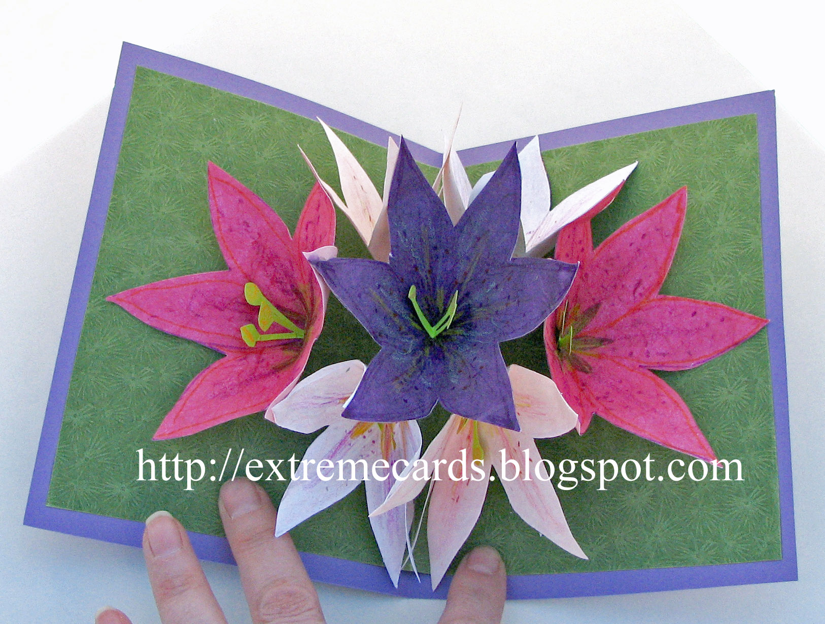 origami birthday card instructions ; IMG_1647