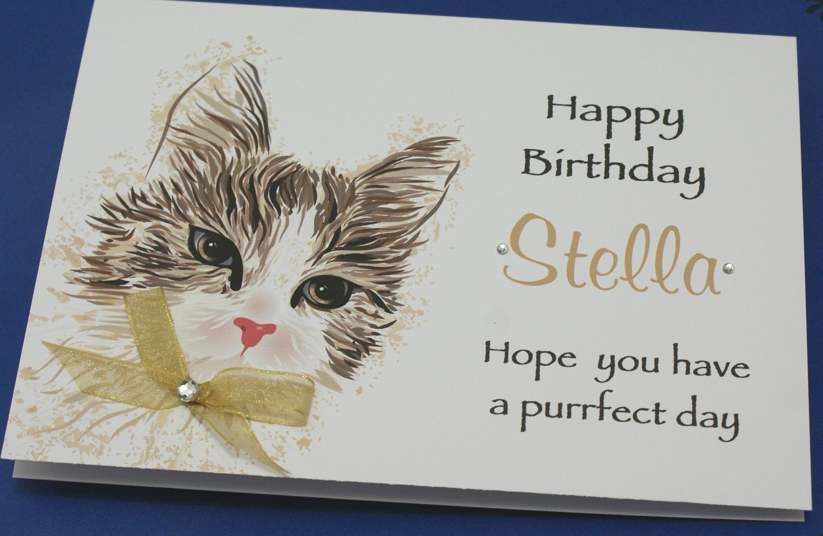 personalised photo birthday cards uk ; LARGE-Handmade-Personalised-Birthday-Card-CUTE-CAT-16th-21st-20th-30th-any-age_4