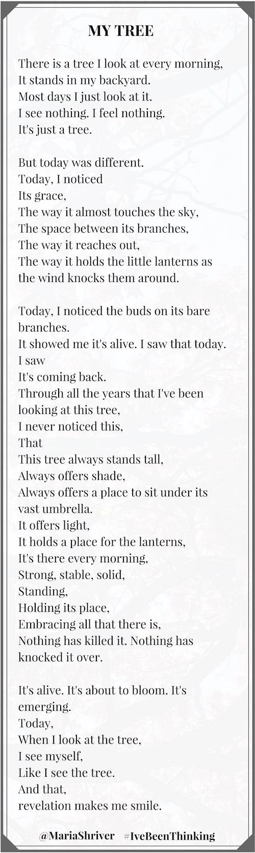today is my birthday poem ; Stories-1