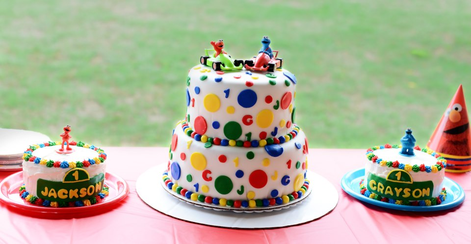 twins first birthday picture ideas ; twin-first-birthday-cake-ideas-twins-1st-birthday-sesame-street-cakes-cakes-kelly-free