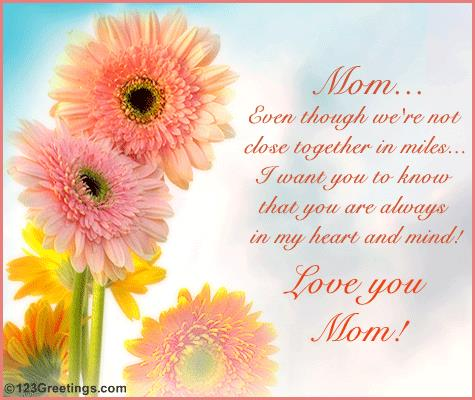 a message for a mother on her birthday ; message-to-your-mother-on-her-birthday-109842