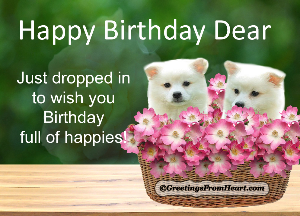 a nice happy birthday message ; happy-birthday-with-cute-puppies