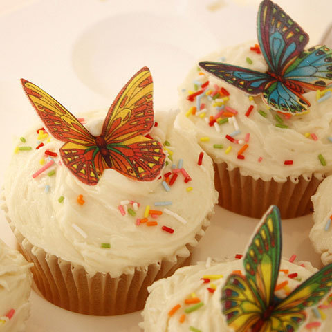 best friend birthday cupcakes ; butterfly_cupcakes