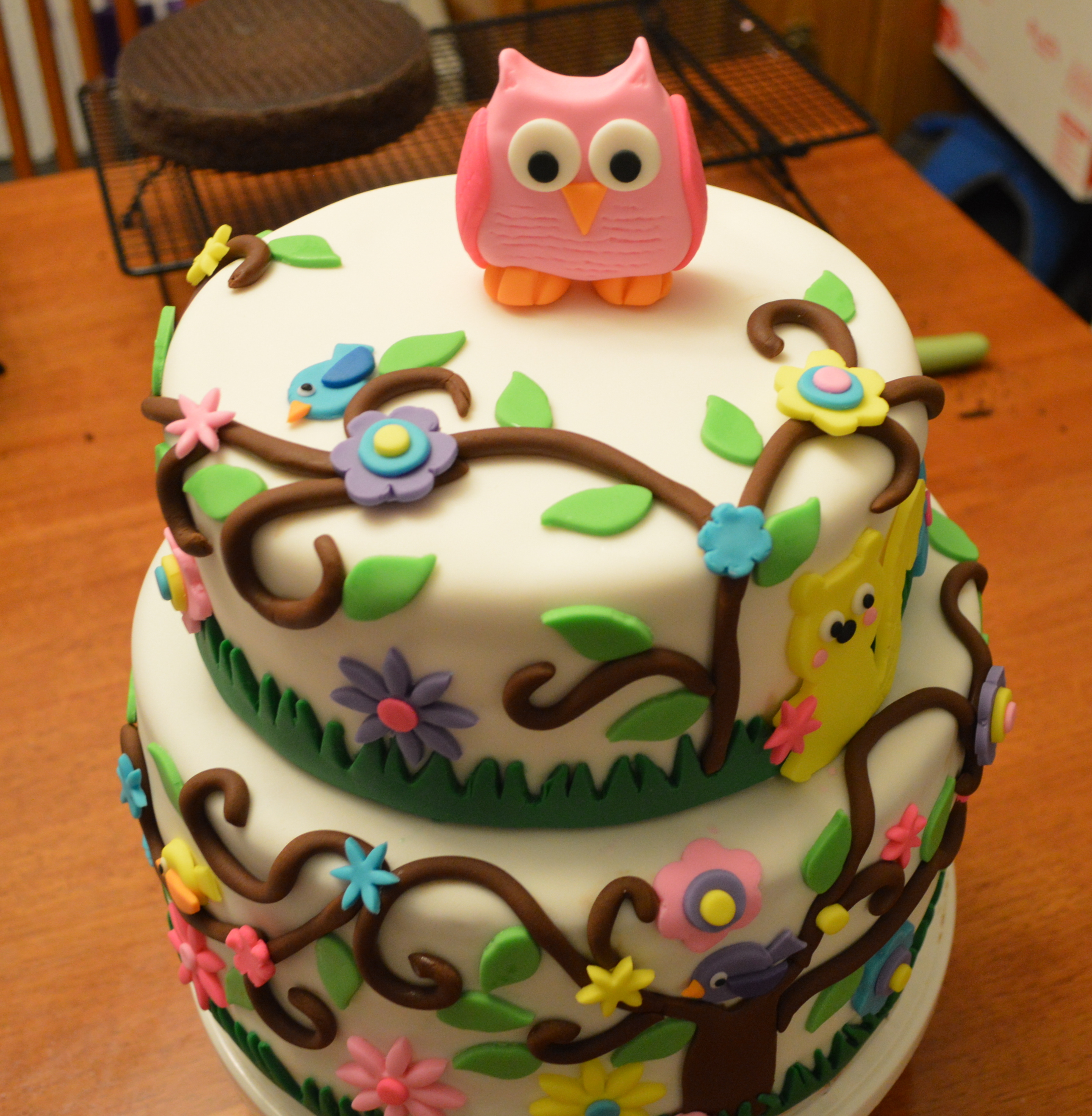 birthday cake with picture on top ; 2-tier-owl-cake-top