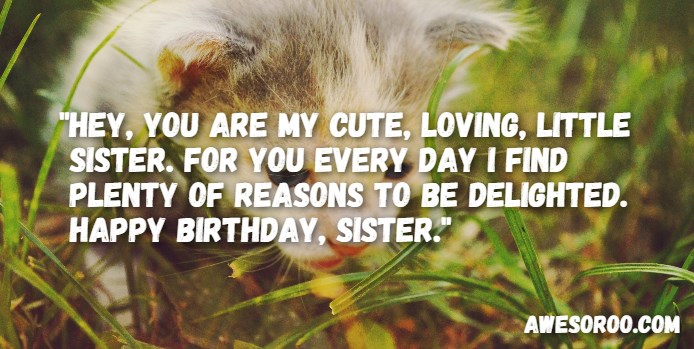 birthday message to a little sister ; birthday-message-to-little-sister-5
