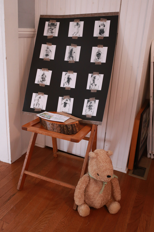 birthday party picture display ; Baby-Photos-On-Display-Winnie-the-Pooh-First-Birthday-Party-Whit-Meza-Photography