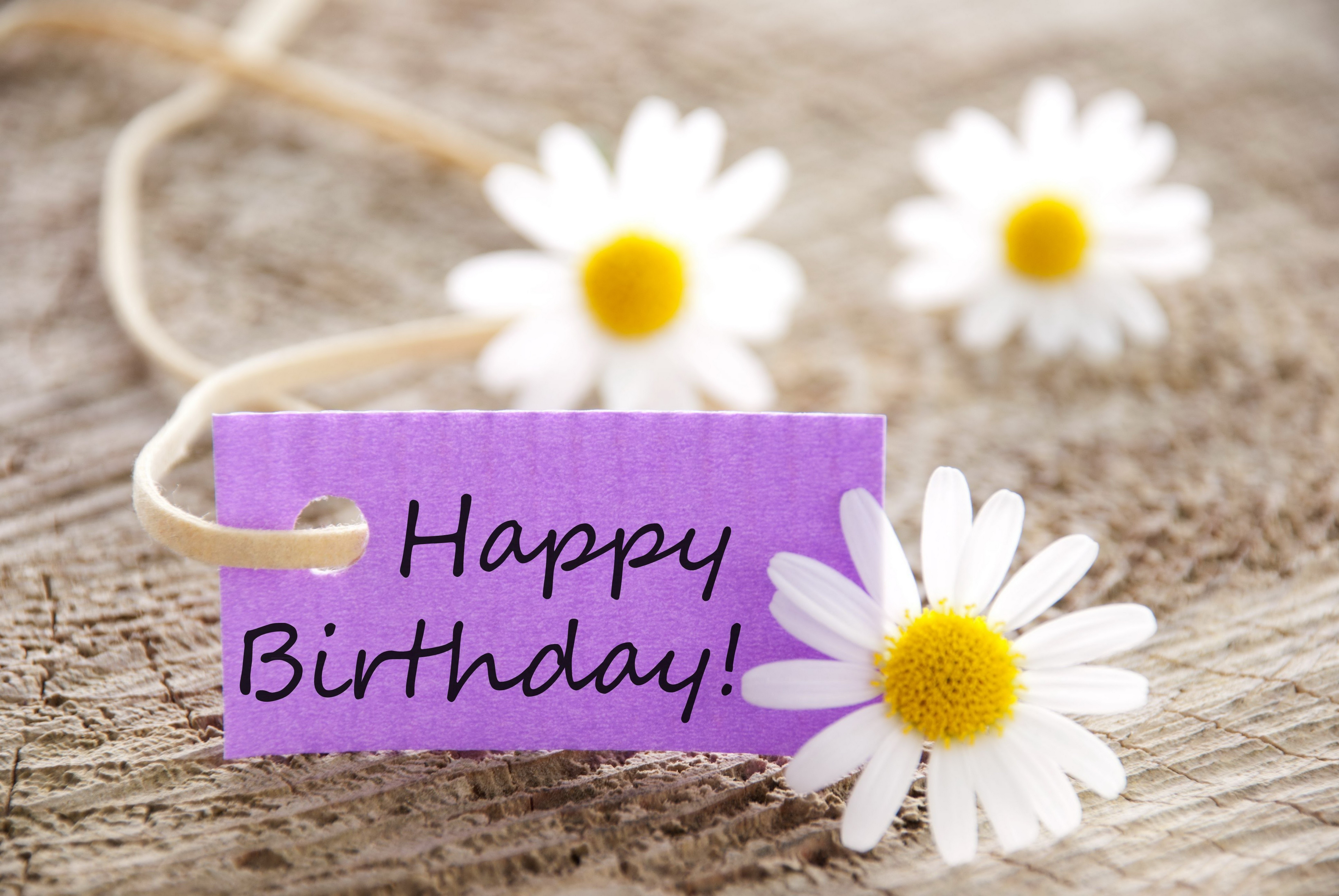 birthday special images hd ; happy-birthday-hd-wallpaper-194