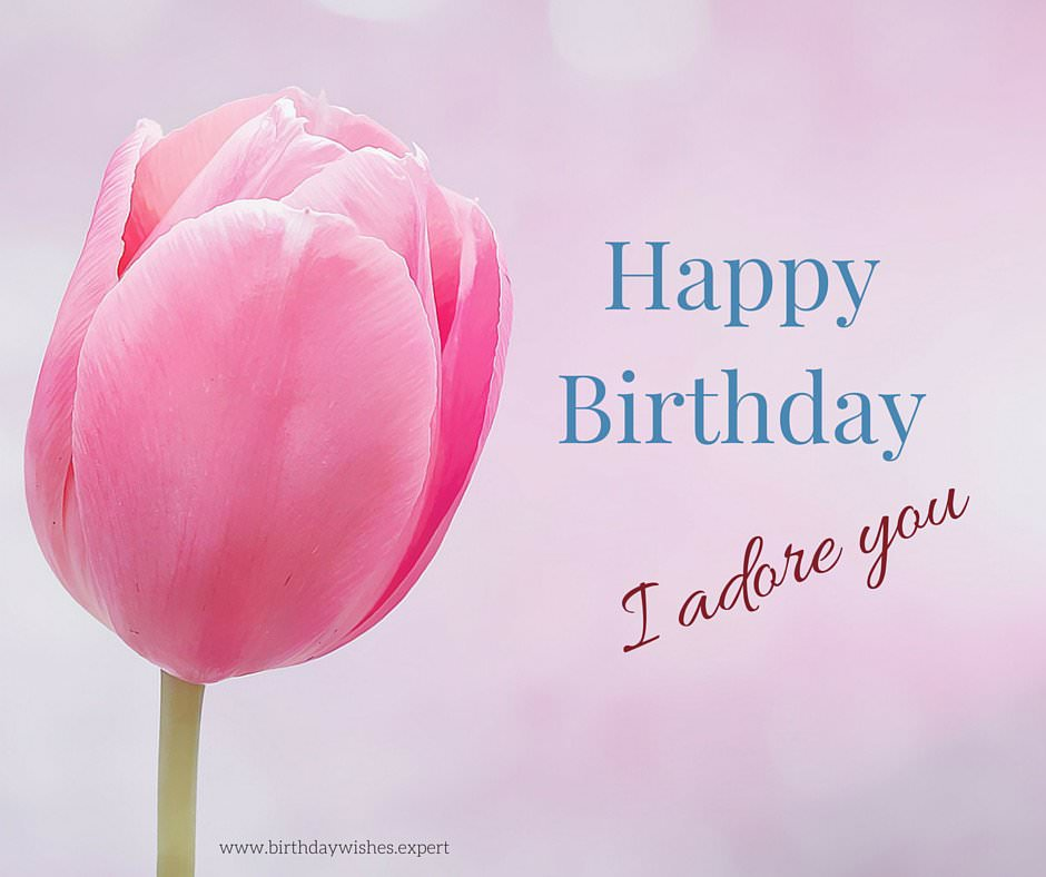 birthday statement ; Birthday-Wish-for-your-wife-on-image-with-pink-tulip-and-love-statement