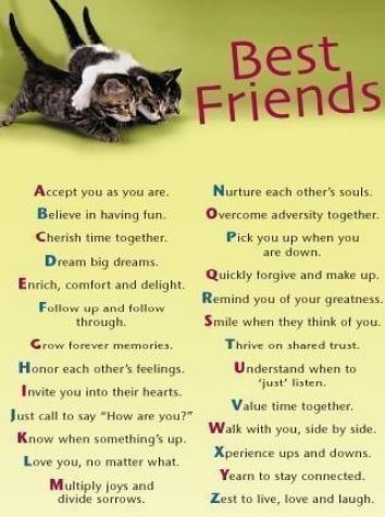 birthday wish for best friend forever in hindi ; happy-birthday-wishes-to-best-friend-pictures