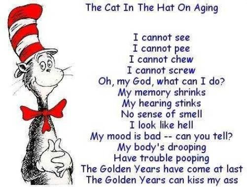 cat in the hat birthday poem ; b93b4d8371281229967c6dc728b75882