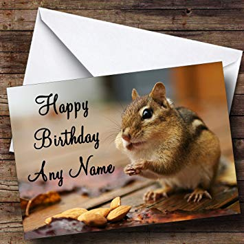 chipmunk birthday card ; 71grayk0hnL
