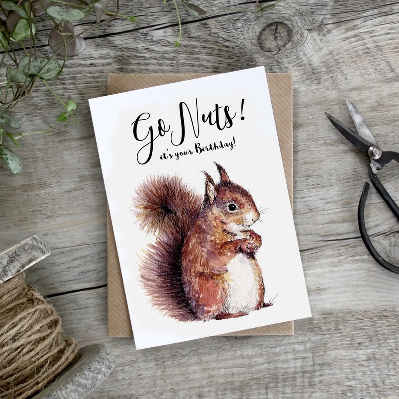 chipmunk birthday card ; buy_squirrel_go_nuts_birthday_card_online_for_him_her_unisex_birthday_cards_with_red_squirrels_animals_grande