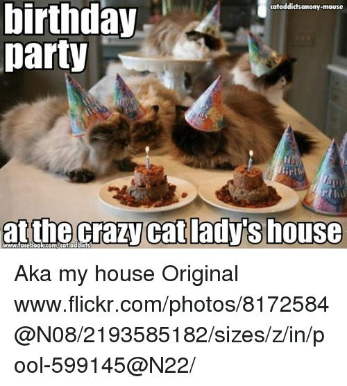 crazy cat birthday picture ; birthday-cataddictsanony-mouse-party-irth-at-the-crazy-cat-adys-house-7412253