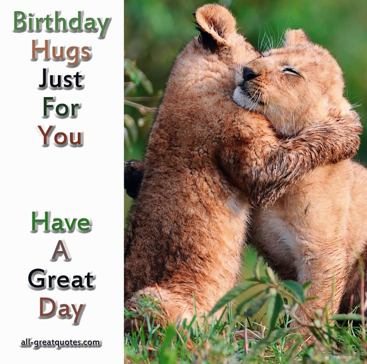 cubs happy birthday message ; 920e433eff66e8d051fdb95b8f66cb60--baby-lions-baby-cubs