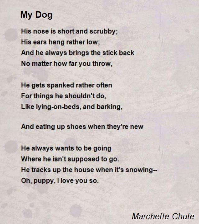 dog birthday poem ; ba9fe9b27c0af16e504f2180a3586a1c