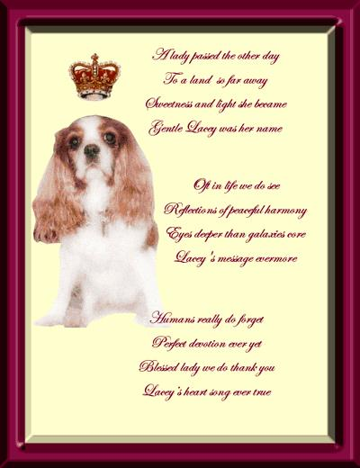 dog birthday poem ; efc1842df2281068fce15568c9ea2891