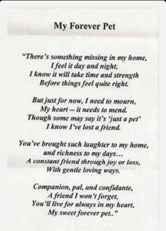 dog birthday poem ; fa612c0fd4348472f6a72ba532ac5141--thankful-quotes-losing-a-pet