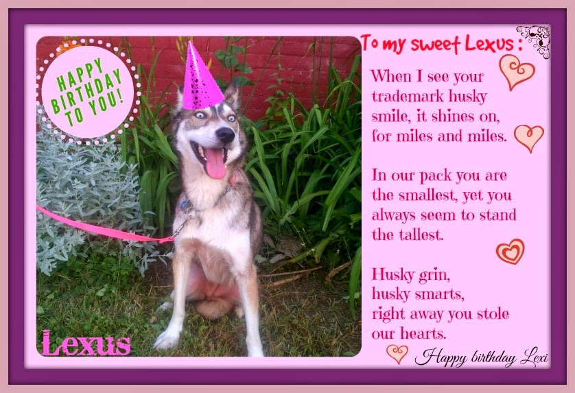 dog birthday poem ; lexus+birthday+card