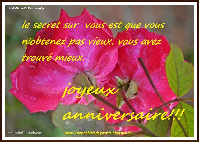 french birthday greeting messages ; 7f7f68926672ceb1d1947dabfbcc9c7c--picture-birthday-happy-birthday-cards