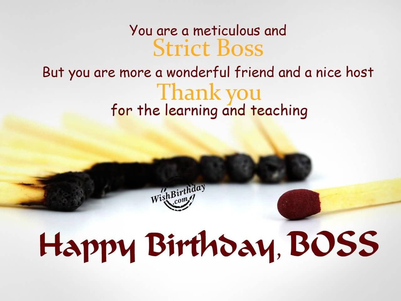 funny birthday message for boss from staff ; You-Are-A-Meticulos-And-Stric-Boss-Thanks-You-Happy-Birthday-Boss