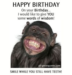 funny happy birthday pictures ; a0d840ab81f82b507f25ff7ad523c6d9--happy-birthday-messages-happy-birthday-quotes