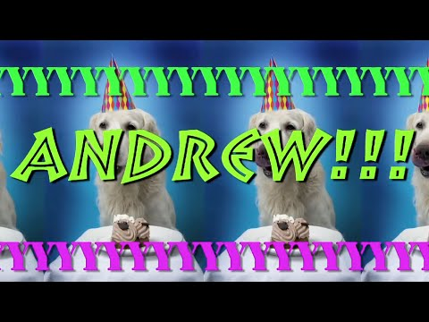 happy birthday andrew ; hqdefault-1