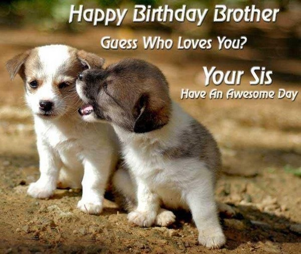 happy birthday brother humor ; funny-happy-birthday-wishes-for-brother-in-law