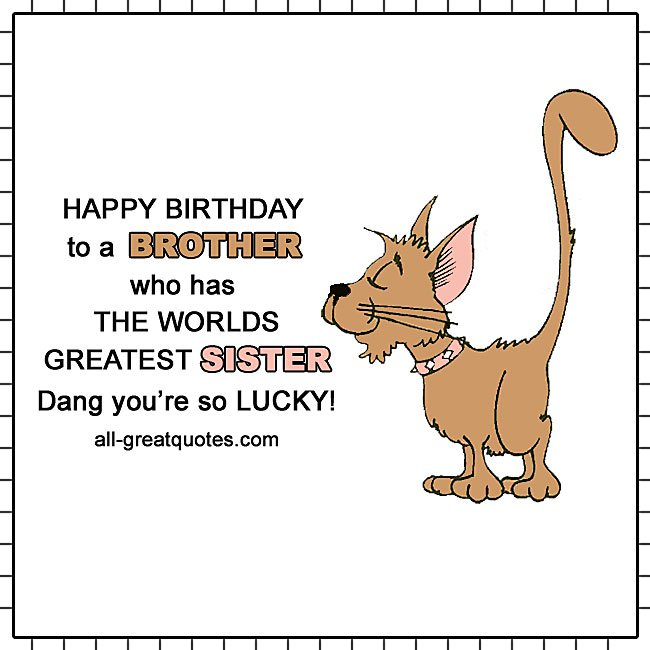 happy birthday brother humor ; happy-birthday-to-a-brother-who-has-the-worlds-greatest-sister-funny-smug-cat-card