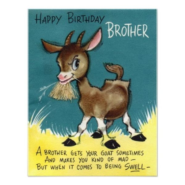 happy birthday brother humor ; happy-birthday-to-brother-funny