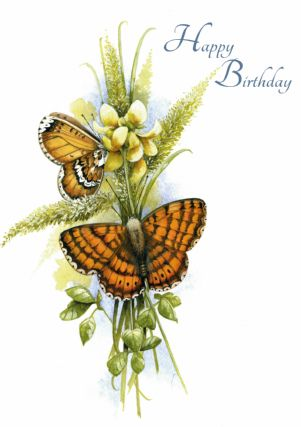 happy birthday butterfly card ; T4619