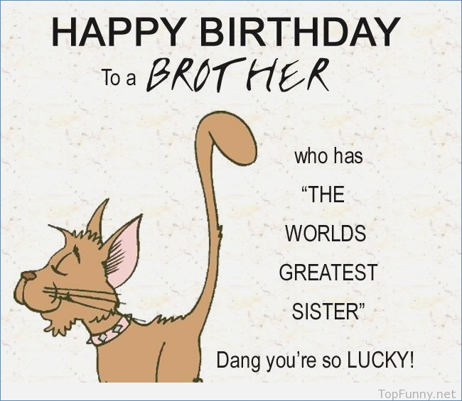 happy birthday card for brother from sister ; ideas-funny-happy-birthday-brother-sister-amp-cousin-cards-sayings-of-birthday-cards-for-brother-from-sister-funny