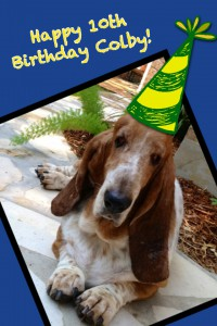 happy birthday colby ; PicCollage